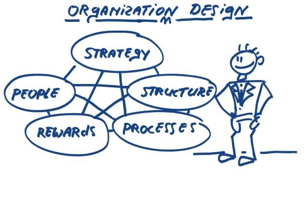 Organisatie organization design Strategy structure processes rewards people structuur proces cultuur